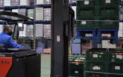 CHEP facilita la eficiencia y sostenibilidad de Ahorramas y Fontestad en la categoría de frutas y verduras